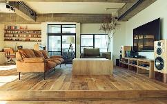 一個經過改造的公寓,保持了它的魅力