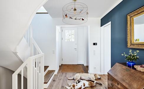 如何让家里的狗狗清洁的干干净净?宠物的清洁之道!